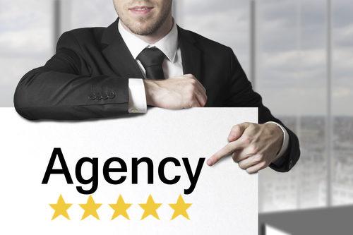 profitable wordpress agency